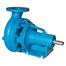 Burks End Suction Pump
