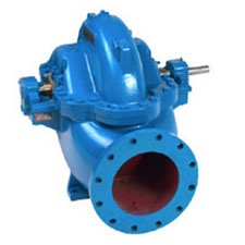 Goulds 3410 Small Capacity Double Suction Pump