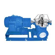 Goulds Water Technology A-C Series 8100 Series Split Case Pump