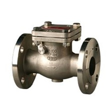 Aloyco Stainless Steel Check Valve