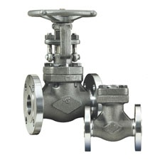 DSI Forged Steel Globe Valve