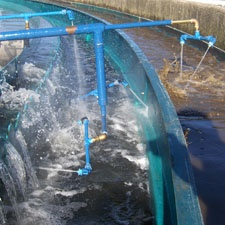 WeirWasher Automated Wastewater Cleaning Systems