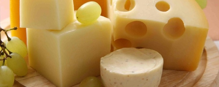 Cheese Manufacturer