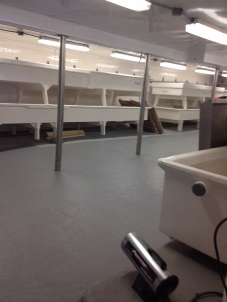 Cheese Brining Room